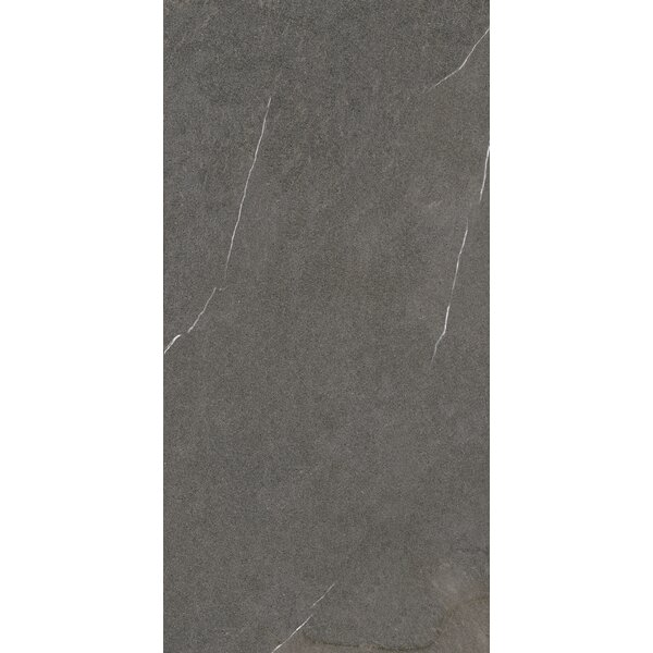 Lifestone 12 x 24 Porcelain Field Tile in Mocha by Madrid Ceramics