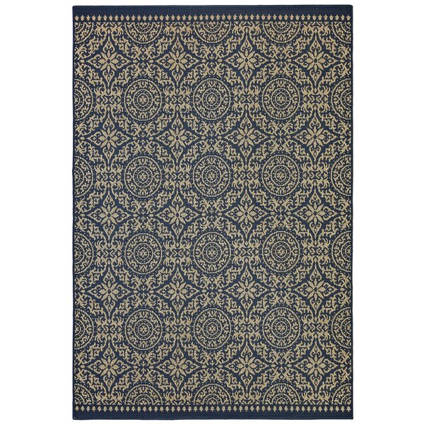 Greger Navy Indoor/Outdoor Area Rug by Darby Home Co