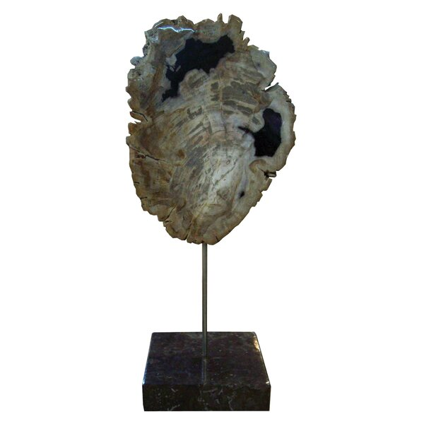 Petrified Wood Sculpture by Union Rustic