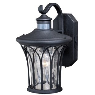 Hylan Outdoor Wall Lantern With Motion Sensor