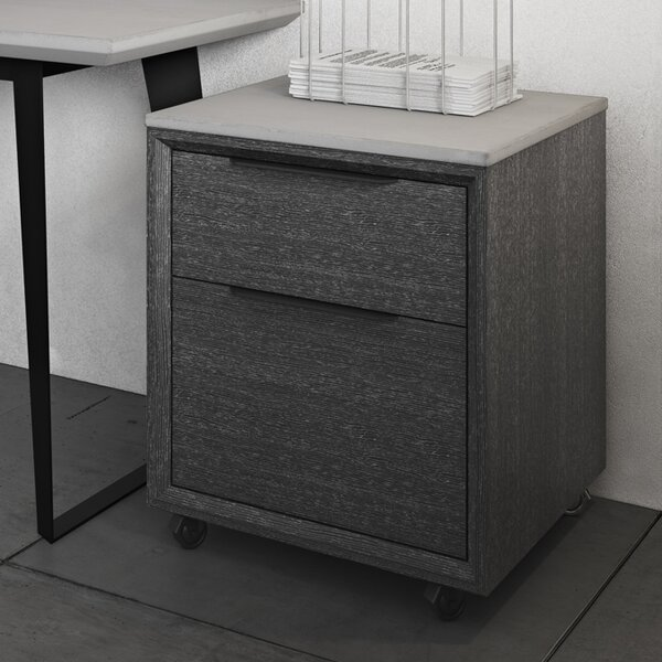 Amsterdam 2-Drawer Mobile Vertical Filing Cabinet by Modloft