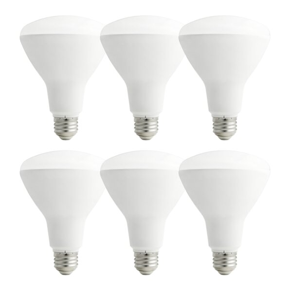 11W E26/Medium LED Light Bulb Pack of 6 by GreenTech Environmental
