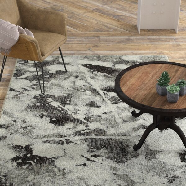 Knox Shadows Charcoal/White Area Rug by Williston Forge
