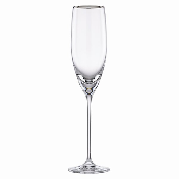 Timeless Platinum Signature 8 oz. Champagne Flute by Lenox