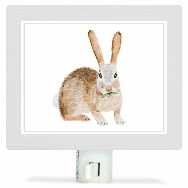 Animal Kingdom - Rabbit by Brett Blumenthal Canvas Night Light by Oopsy Daisy