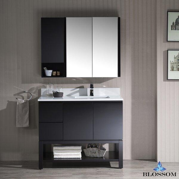Maly 43 Single Bathroom Vanity Set with Mirror by Orren Ellis