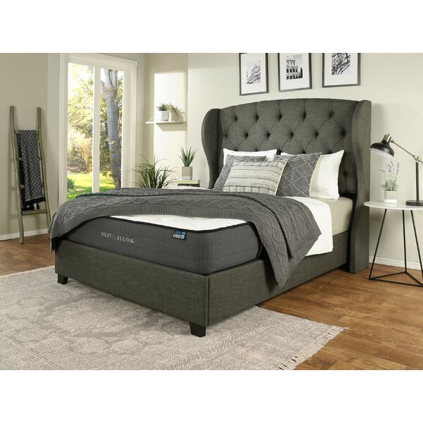 Sornson Upholstered Platform Bed with Mattress by Darby Home Co