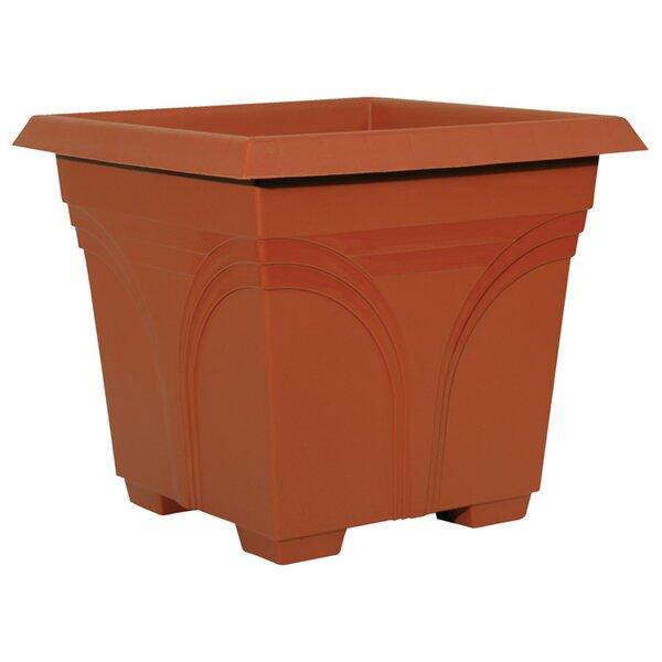 Plastic Pot Planter (Set of 10) by Ames