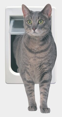 Tubby Kat with 4 Way Lock Pet Door by Perfect Pet by Ideal