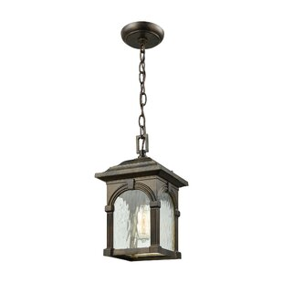 Shopping for Joshana 1-Light Outdoor Hanging Lantern By Gracie Oaks