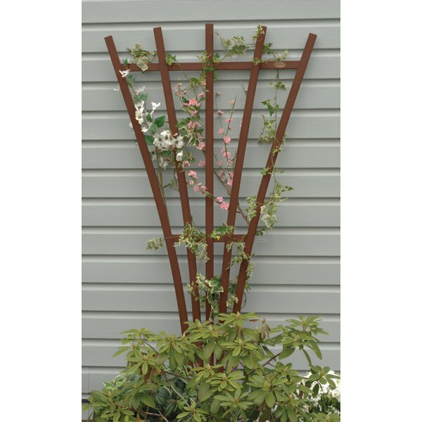 Eggleston Highwood® Traditional Wood Fan Trellis by Charlton Home
