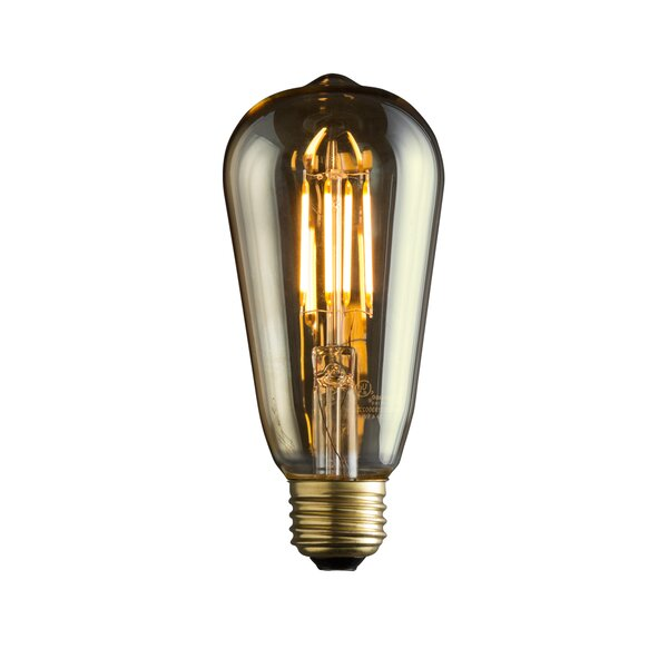 Edison Light Bulb by IRIS USA, Inc.