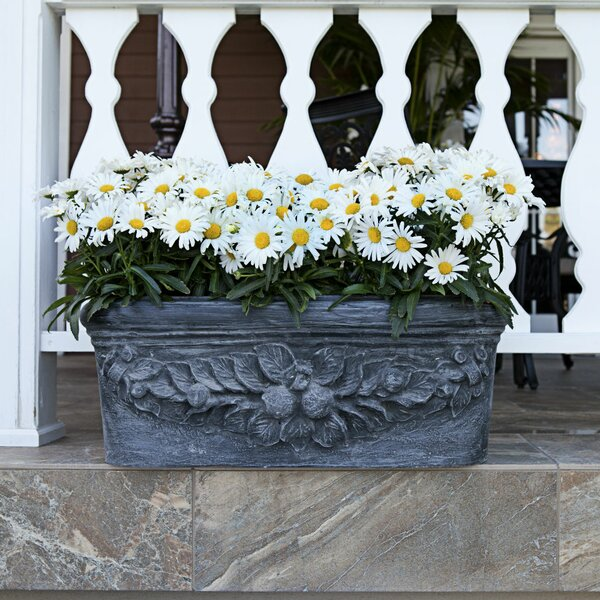 Fruit Resin Stone Window Box Planter by Amedeo Design