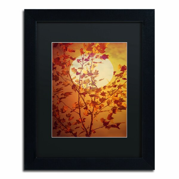 Time Out by Philippe Sainte-Laudy Matted Framed Photographic Print by Trademark Fine Art