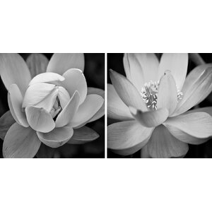 'Lotus' 2 Piece Photographic Print on Wrapped Canvas Set by Zipcode Design