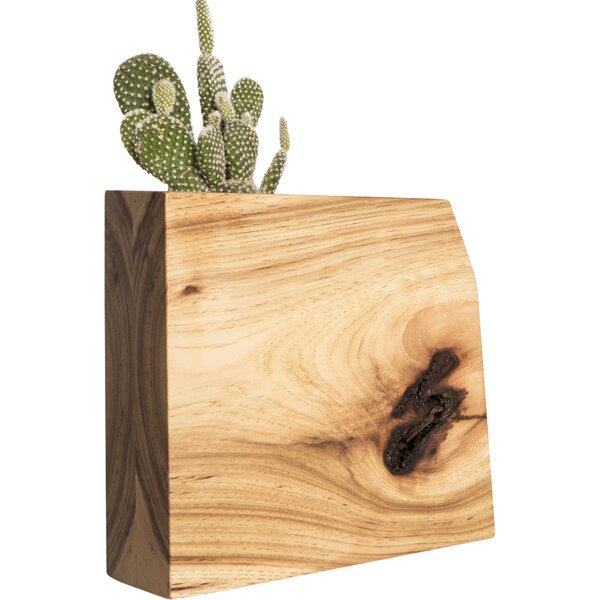 Wyatt Jr. Hickory Pot Planter by Boyce Studio