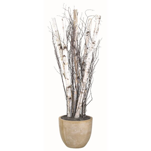 Birch Poles and Birch Tree Tops Resin Plant in Planter by Union Rustic