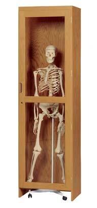 Mobile Skeleton Cabinet Tool