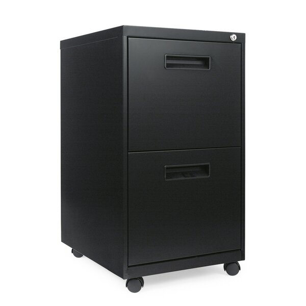 Kapp Metal 2-Drawer Vertical Filling Cabinet by Symple Stuff