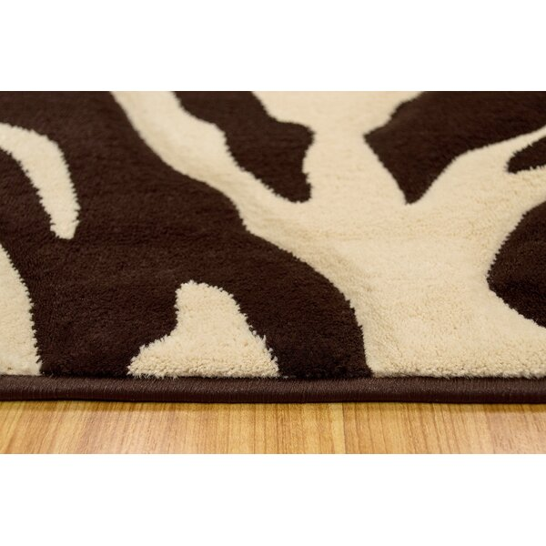 Chocolate/Cream Area Rug by Brady Home