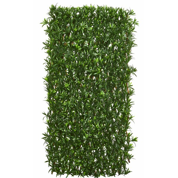 3.5 ft. H x 6.5 ft. W Podocarpus Expandable Fence Panel by Nearly Natural