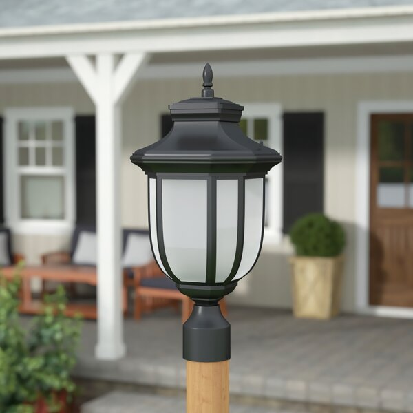 Teri 1-Light Lantern Head by Fleur De Lis Living