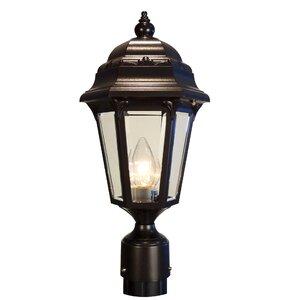 Astor 1-Light Lantern Head