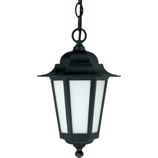 Mayer 1-Light Outdoor Hanging Lantern by Alcott Hill