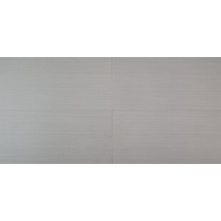 Focus Graphite 12 x 24 Porcelain Stone Look /Field Tile in Gray (Minimum 224 Square Feet) by MSI