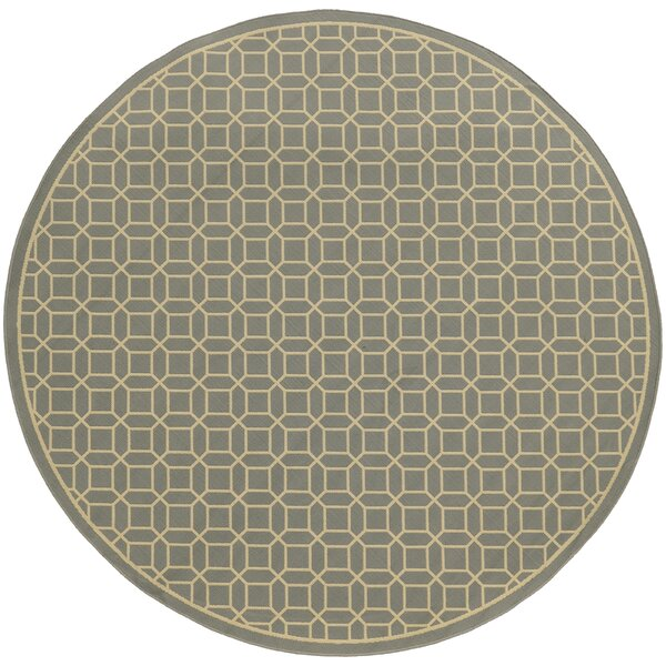 Liza Grey/Ivory Indoor/Outdoor Area Rug by Langley Street