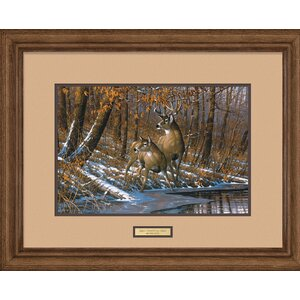 Fall Whitetail Deer by Michael Sieve Framed Painting Print by Wild Wings