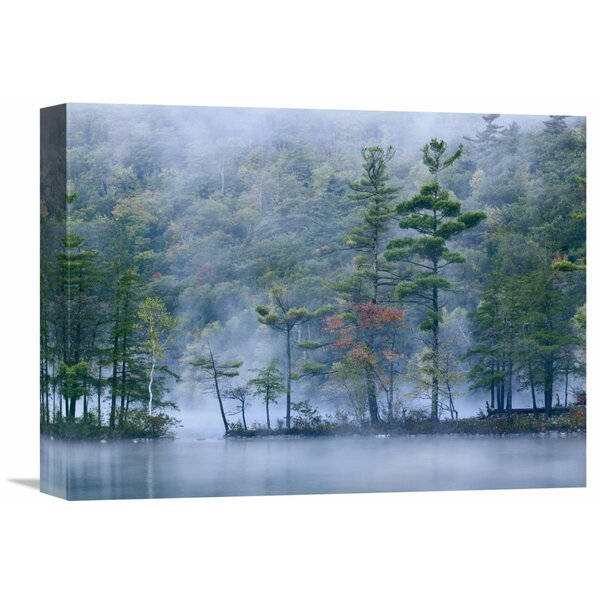 Nature Photographs Emerald Lake in Fog, Emerald Lake State Park, Vermont by Tim Fitzharris Photographic Print on Wrapped Canvas by Global Gallery