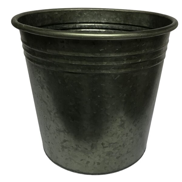 Nicci Conical Tree Metal Pot Planter by Gracie Oaks