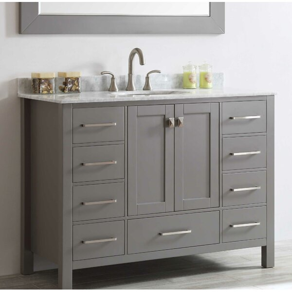 Pichardo 42 Single Bathroom Vanity Set by Brayden