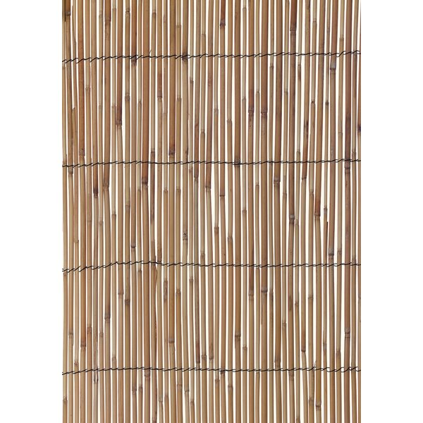 6.5 ft. H x 13 ft. W Reed Fencing by World Source Partners