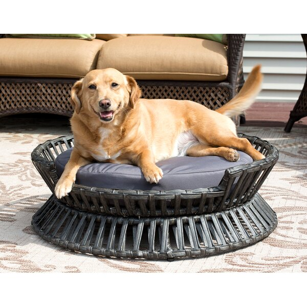Rattan Raised Arc Dog Bed by Iconic Pet