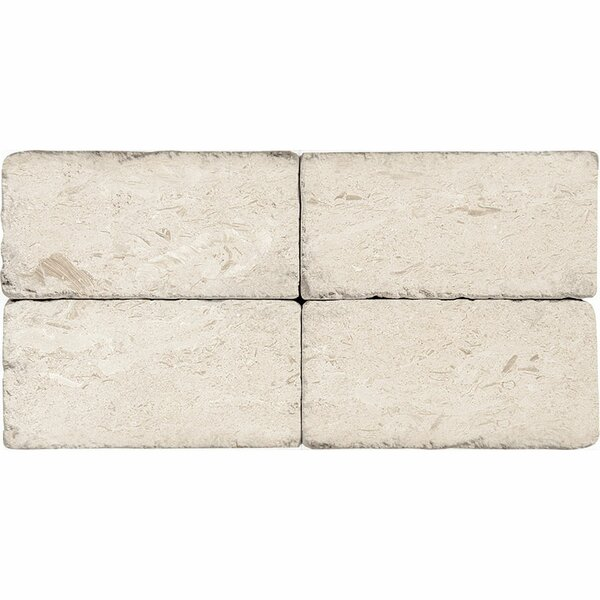 3 x 6 Natural Stone Subway Tile in Fossil Stone by Parvatile