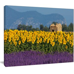 'Lavender and Sunflower in Provence' Photographic Print on Wrapped Canvas by Design Art