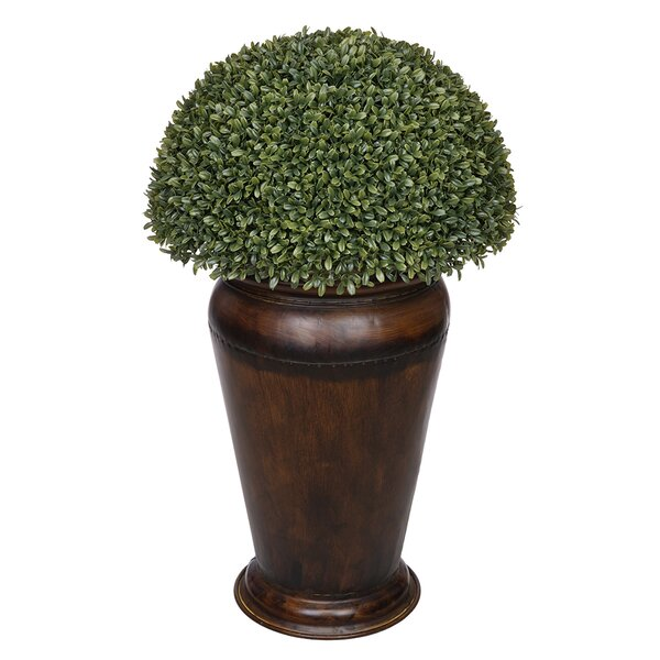 Artificial Boxwood Topiary in Decorative Vase by House of Silk Flowers Inc.