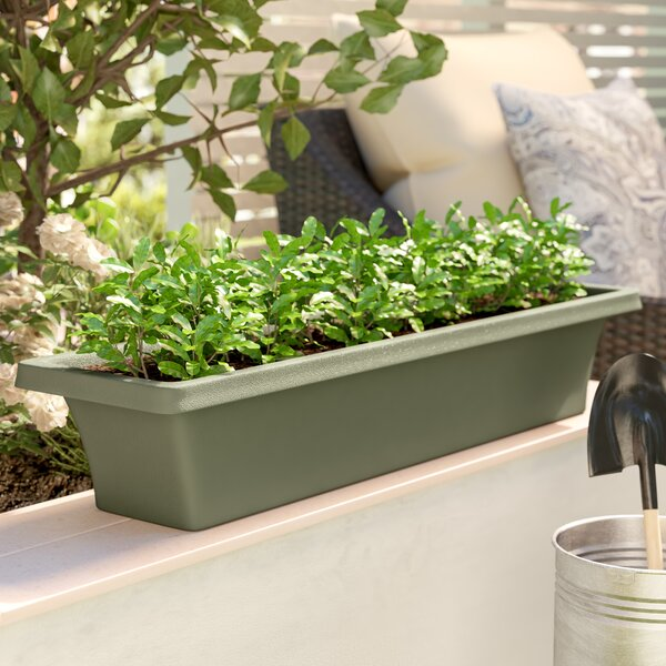 Felker Plastic Window Box Planter by Charlton Home