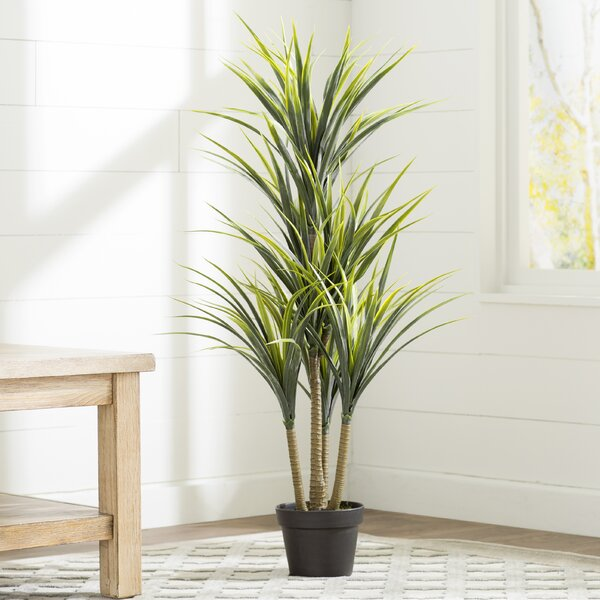 Artificial Yucca Foliage Plant in Pot by Bay Isle Home