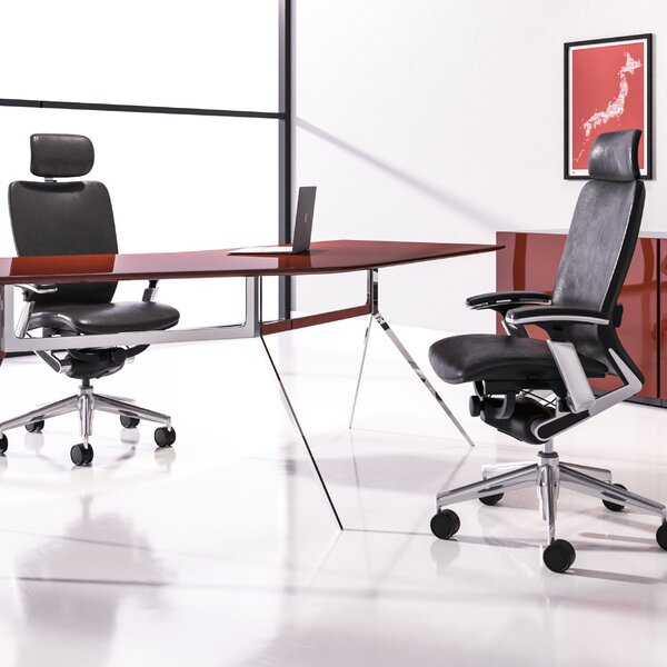Mid-Back Ergonomic Mesh Executive Chair by Symple Stuff