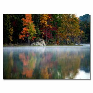 Old Autumn by CATeyes Framed Photographic Print on Wrapped Canvas by Trademark Fine Art