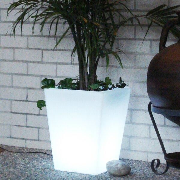 Bon Décor Plastic Pot Planter by CompassCo
