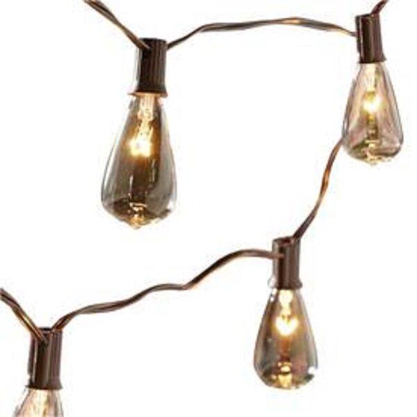 Edison 10-Light Globe String Lights by Aspen Brands