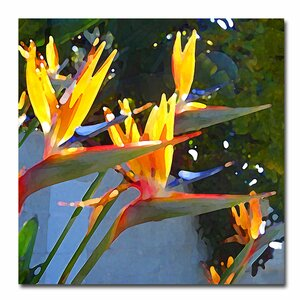 Bird of Paradise Backlit by Sun by Amy Vangsgard Painting Print on Canvas by Trademark Fine Art