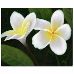 Hawaiian Lei Flowers by Rio Framed Painting Print on Wrapped Canvas by Trademark Fine Art