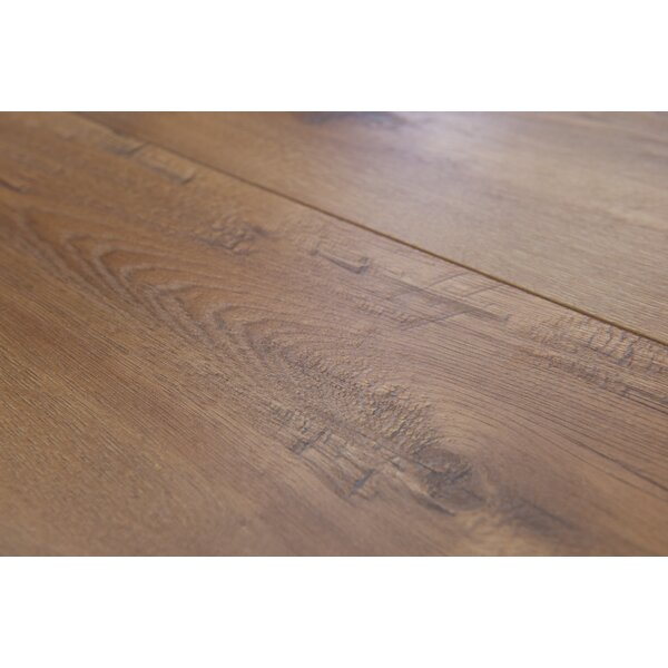 Geneva 8.5 x 48 x 12mm Hickory Laminate Flooring in Light Brown by Branton Flooring Collection