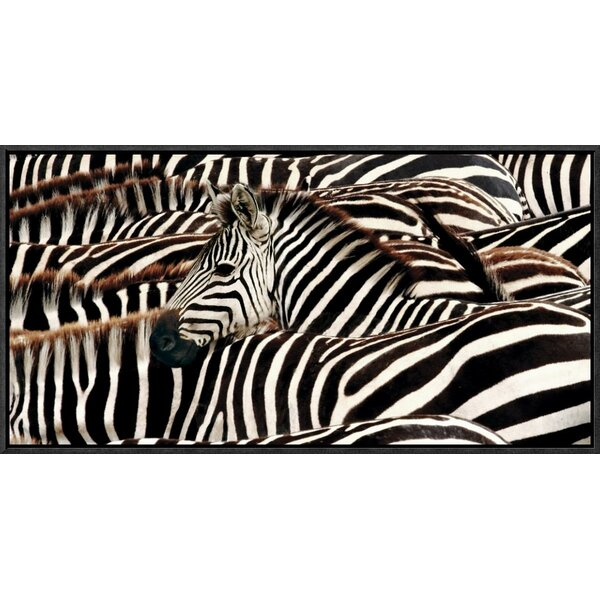 Herd of Zebras Framed Photographic Print on Canvas by Global Gallery
