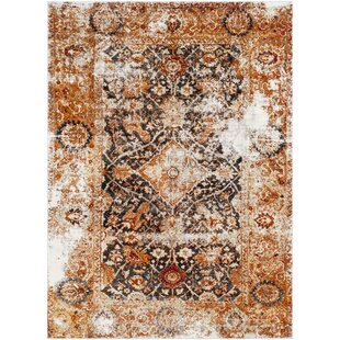 Ridgecrest Distressed Vintage Orange Black Area Rug